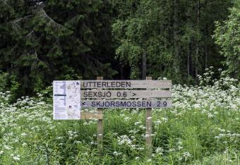 Hiking Trails in Pedersöre